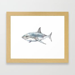 Shark-Filled Waters Framed Art Print