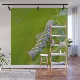 Tomato Horn Worm Wall Mural