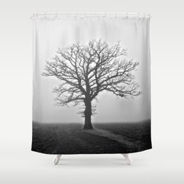 A Single Tree - The Peace Collection Shower Curtain