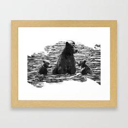 A Dip in the Lake - Mama Bear and Cubs Swim in Lake Tahoe Framed Art Print