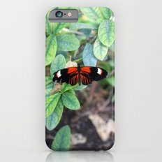 Butterfly Red iPhone 6s Slim Case