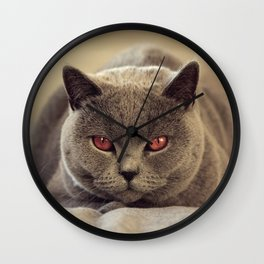 Superstar Diesel the Cat ! Wall Clock