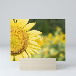 The Color of Sunflowers Mini Art Print