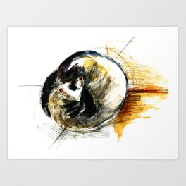 Little furet Sleepy Ferret Art Print
