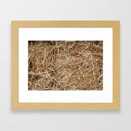 Hay day Framed Art Print