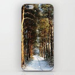 Forest Snow Scene iPhone Skin