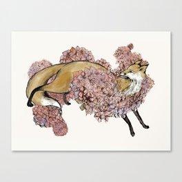 Hydrangea Fox Canvas Print