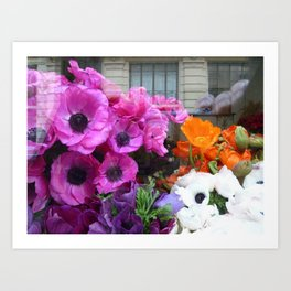 Flower Shop Window Art Print