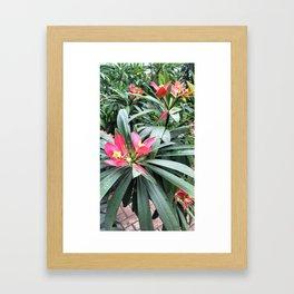 Vibrant Red Flowers Framed Art Print
