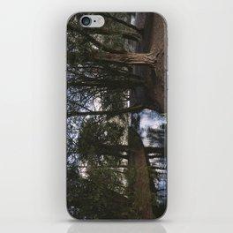 Weir in woodland. Lynford, Norfolk, UK. iPhone Skin