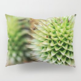 An Open Heart Can Find Beauty in Unexpected Places Pillow Sham