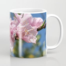 Close Up Peach Tree Blossom Against Blue Sky Coffee Mug
