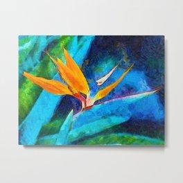 Bird Of Paradise Plant art Metal Print
