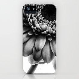Gerbera 1 iPhone Case