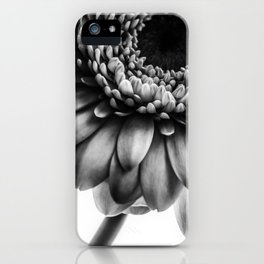 Gerbera 1 iPhone Case