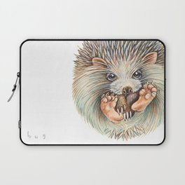 Hedgehog ball Laptop Sleeve