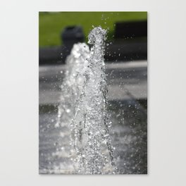 Water8 Canvas Print