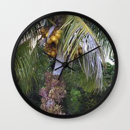 Coconut Palm - Cocos nucifera Wall Clock