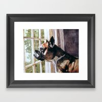 Bulldog Waiting  Framed Art Print