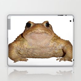 Bufo Bufo European Toad  Isolated Laptop & iPad Skin