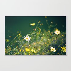 Spring Applause Canvas Print
