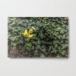 Be different, be unique Metal Print