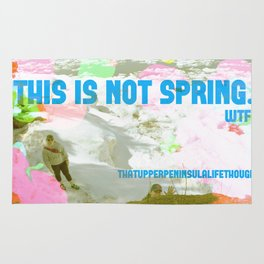 This is not spring. Rug