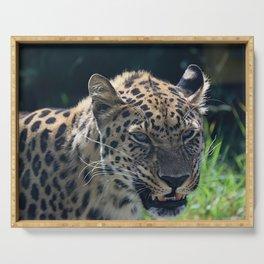 Amur Leopard Serving Tray