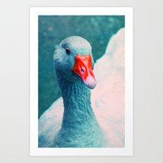 miss ducky Art Print
