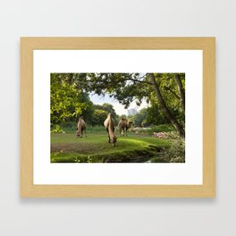 a momentary lapse of reason Framed Art Print