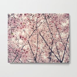 Blizzard of Blossoms Metal Print