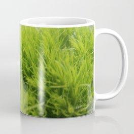 Green Plant Coffee Mug