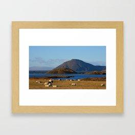 Lake Myvatn Iceland Framed Art Print