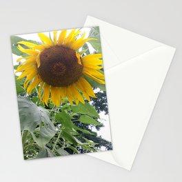 Oklahoma Sun Stationery Cards
