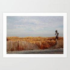 Beach in the Winter Art Print
