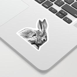 Black and white rabbit Sticker