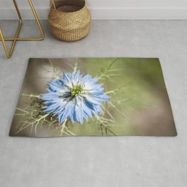 Blue flower close up Nigella love in the mist Rug