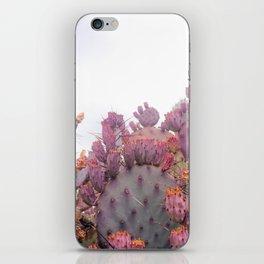 Santa Rita Cactus iPhone Skin