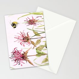 Flowers Bee Balm Pink Garden Wildflowers Nature Art Stationery Cards