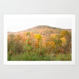 Autumn Upstate Art Print