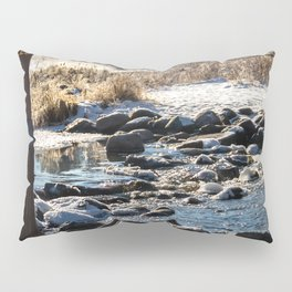 Mississippi Headwaters in December Pillow Sham