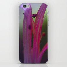it's getting Stamen in here iPhone & iPod Skin