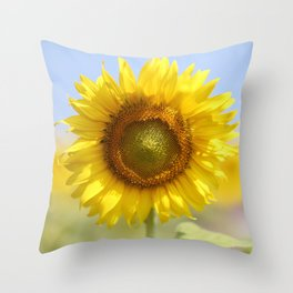 Sunflower - Flower, Floral, Nature Photography Throw Pillow