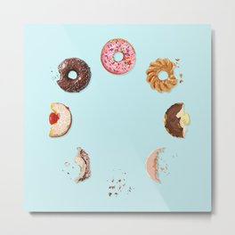 Donut Phases Metal Print