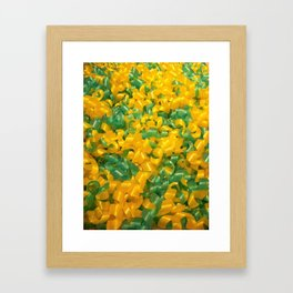 Swedish yellow and green candy Framed Art Print