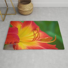 Ruby Spider Day Lily Rug
