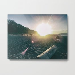 One Afternoon in Summer... Metal Print