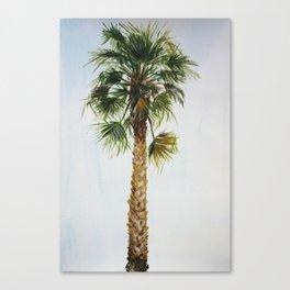 Palm tree, coastal watercolor Canvas Print