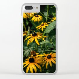 Black Eyed Susan's, Central Park Clear iPhone Case