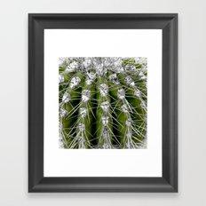 Green Cactus Framed Art Print